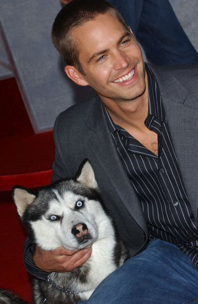 Paul Walker 8 Below image