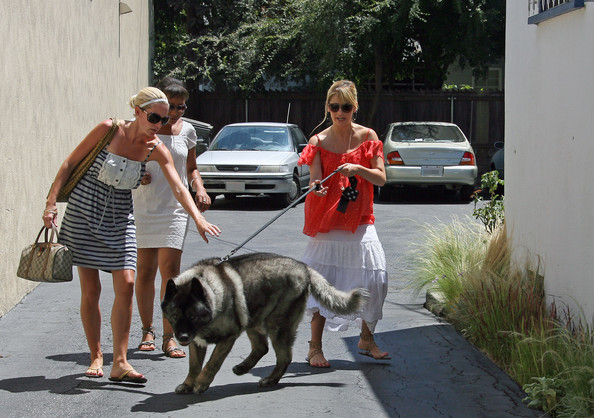 Photo of Sarah Michelle Gellar & her Dog