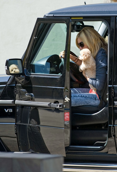 Ashley Tisdale Ashley Tisdale takes her pup Maui to the LA Studios in Hollywood before later meeting up with boyfriend Scott Speer for a bite at Mo's in Burbank.