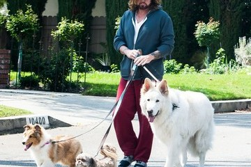Billy Ray Cyrus Billy Ray Cyrus Takes His Dogs for a Walk