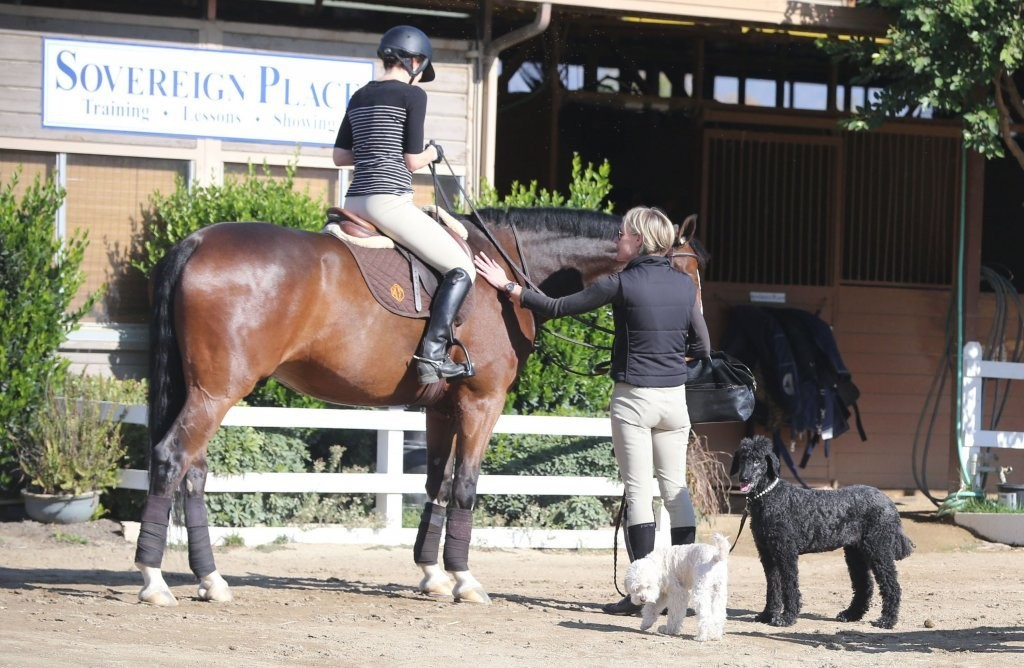 Portia De Rossi Portia De Rossi Photos Portia De Rossi Taking Horse Riding Lessons Zimbio