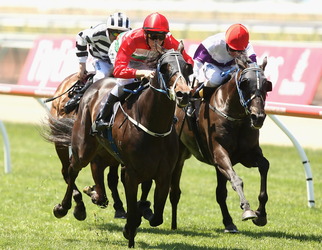 stakes day - photo #10