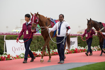 Al-Rayyan H.H The Emir's Sword Festival - Day 1