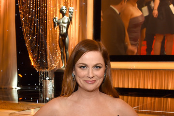 Amy Poehler The 22nd Annual Screen Actors Guild Awards - Cocktail Reception