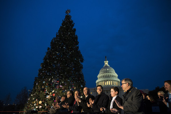 annual us capitol christmas tree lighting ceremony held in washington