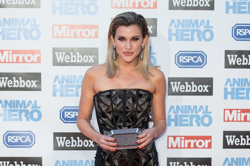Ashley Roberts Daily Mirror & RSPCA Animal Hero Awards - Red Carpet Arrivals