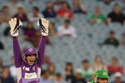 Tim Paine of the Hurricanes appeals successfully for the wicket of Luke Wright of the Stars off the bowling of Cameron Boyce of the Hurricanes during the Big Bash League Semi Final match between the Melbourne Stars and the Hobart Hurricanes at Melbourne Cricket Ground on February 4, 2014 in Melbourne, Australia.