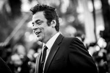 Benicio Del Toro Alternative View - The 70th Annual Cannes Film Festival