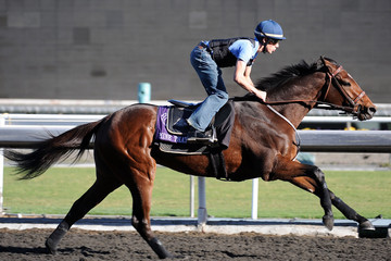 Joe Talamo Breeders' Cup Preview