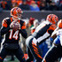 Andy Dalton Photos - Andy Dalton #14 of the Cincinnati Bengals drops back to throw a pass during the first quarter of the game against the Buffalo Bills at Paul Brown Stadium on November 20, 2016 in Cincinnati, Ohio. - Buffalo Bills v Cincinnati Bengals
