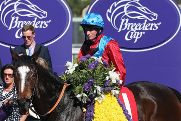 Dank 2013 Breeders' Cup World Championships - Day 2