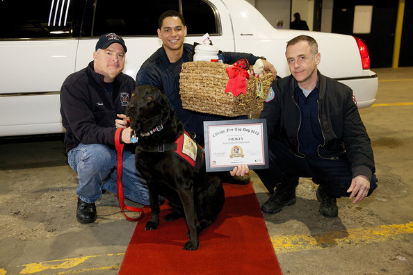 'Top Dog' Winner Makes a Cameo on 'Chicago Fire'