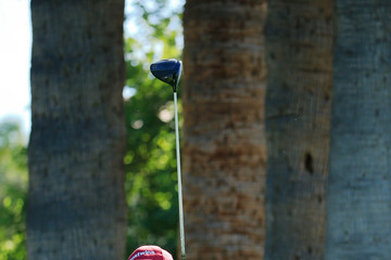 David Frost Charles Schwab Cup Championship - Round Two