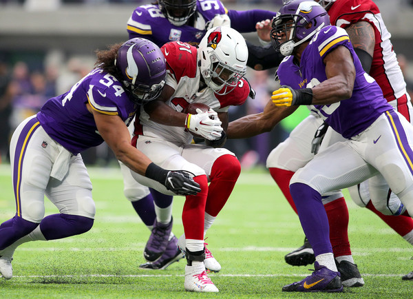 Arizona Cardinals v Minnesota Vikings []