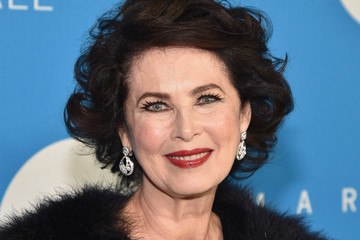 Dayle Haddon 13th Annual UNICEF Snowflake Ball 2017 - Arrivals
