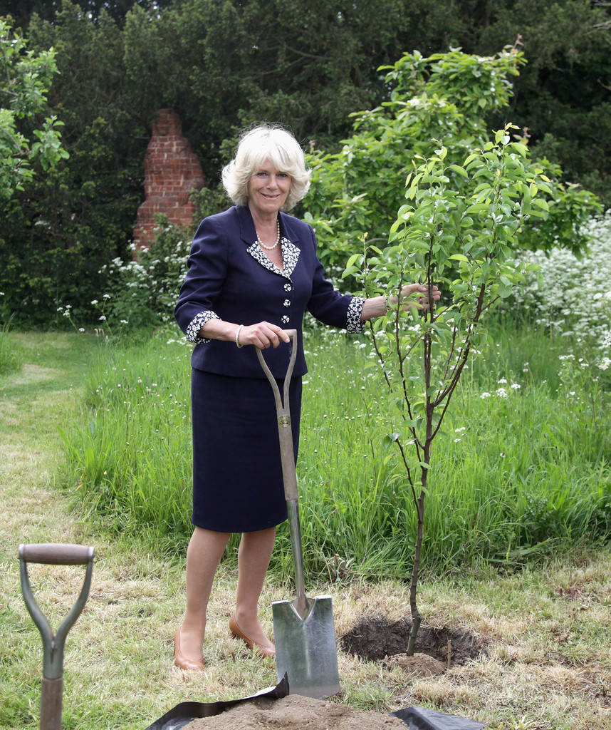 The Duchess Of Cornwall Visits East Sussex