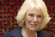 Camilla, Duchess of Cornwall holds a poppy, which she made during her visit to the Poppy Factory on October 24, 2013 in London, England.   Since 1922, the Poppy Factory has delivered the single-minded ambition to help wounded, injured or sick ex-Servicemen and women and their dependents to find paid, meaningful civilian employment. Workers at the factory produce millions of poppies, wreaths and wooden crosses by hand for the Royal British Legion's annual Remembrance Day appeal.