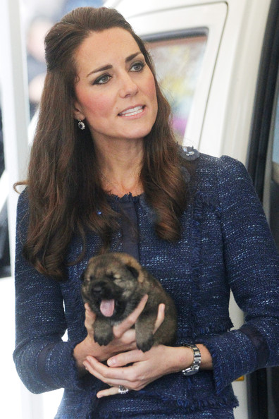 Catherine, Duchess of Cambridge holds a puppy during a visit to the Royal New Zealand Police College on April 16, 2014 in Wellington, New Zealand. The Duke and Duchess of Cambridge are on a three-week tour of Australia and New Zealand, the first official trip overseas with their son, Prince George of Cambridge.