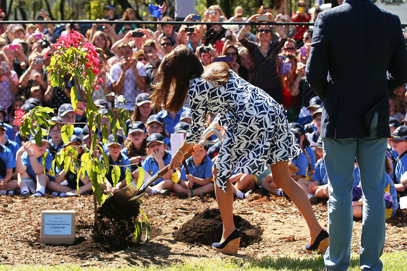 Catherine, Duchess of Cambridge places soil on a West Australian Summer Red at the Winmalee Guide Hall on April 17, 2014 in Winmalee, Australia. The Duke and Duchess of Cambridge are on a three-week tour of Australia and New Zealand, the first official trip overseas with their son, Prince George of Cambridge.