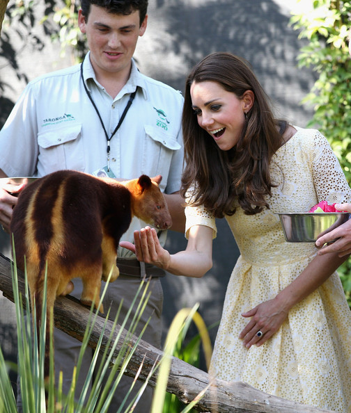 Catherine, Duchess of Cambridge feeds a tree kangaroo at Taronga Zoo on April 20, 2014 in Sydney, Australia. The Duke and Duchess of Cambridge are on a three-week tour of Australia and New Zealand, the first official trip overseas with their son, Prince George of Cambridge.