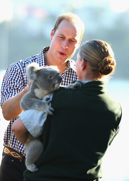 Prince William, Duke of Cambridge meets a Koala at Taronga Zoo on April 20, 2014 in Sydney, Australia. The Duke and Duchess of Cambridge are on a three-week tour of Australia and New Zealand, the first official trip overseas with their son, Prince George of Cambridge.