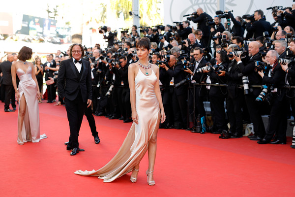 'Ismael's Ghosts (Les Fantomes d'Ismael)' and Opening Gala Red Carpet Arrivals - The 70th Annual Cannes Film Festival