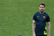 Cesc Fabregas Lionel Messi Photos Photo