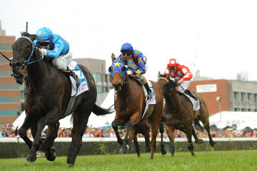 Fontein Ruby Caulfield Cup Day