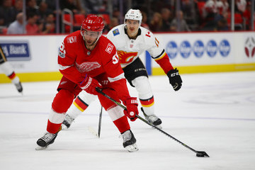 Frans Nielsen Calgary Flames v Detroit Red WIngs