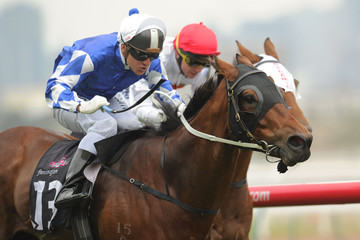Free of Doubt Melbourne Racing