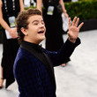 Gaten Matarazzo 26th Annual Screen Actors Guild Awards - Fan Bleachers