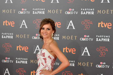 Goya Toledo Goya Cinema Awards 2016 - Red Carpet