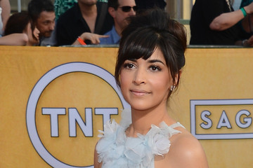 Hannah Simone 20th Annual Screen Actors Guild Awards - Arrivals