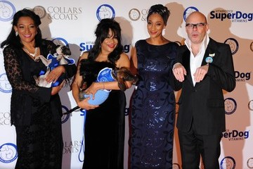Harry Hill Battersea Dogs and Cats Home's Annual Collars and Coats Gala - Red Carpet Arrivals