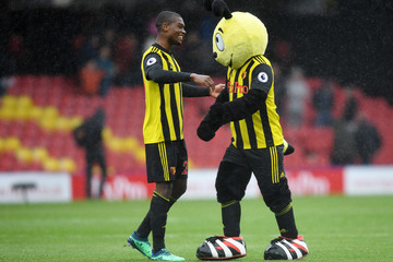 Harry the Hornet Watford FC v Crystal Palace - Premier League