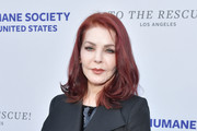 Priscilla Presley Photos Photo