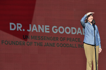 Jane Goodall 2017 Global Citizen Festival in Central Park to End Extreme Poverty by 2030 - Show