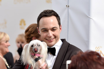 Jim Parsons Arrivals at the 66th Annual Primetime Emmy Awards