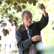 John Hurt Preparations for the Hampton Court Palace Flower Show