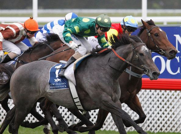2009 New Zealand Cup