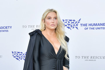 Kesha The Humane Society Of The United States To The Rescue! Los Angeles Gala 2019 - Arrivals