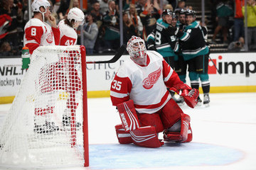 Libor Sulak Detroit Red Wings v Anaheim Ducks