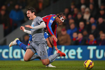 Marouane Chamakh Crystal Palace v Newcastle United - Premier League