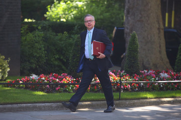 Michael Gove Cabinet Ministers Attend Downing Street Meeting