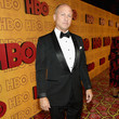 Mike Judge HBO's Post Emmy Awards Reception - Red Carpet