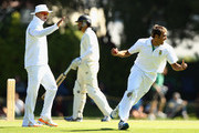 Imran Tahir of South Africa (R) celebrates his wicket of Brendon McCullum of New Zealand during day two of the First Test match between New Zealand and South Africa at the University Oval on March 8, 2012 in Dunedin, New Zealand.