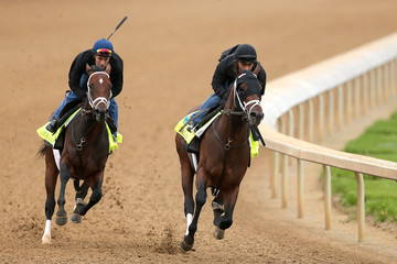 Palace Malice 2013 Kentucky Derby: Preview