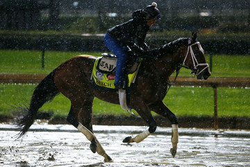 Patch 143rd Kentucky Derby - Previews