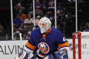 Robin Lehner Photos Photo