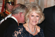 Camilla, Duchess of Cornwall attends a reception and dinner for supporters of The British Asian Trust at the Natural History Museum on February 2, 2016 in London, England.